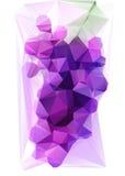 Triangulated фиолетовая виноградина Стоковое Изображение