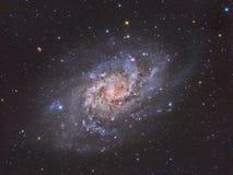 Triangulum galax M33 vektor illustrationer
