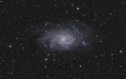 Triangulum Galaxy in constellation Triangulum. Triangulum Galaxy (M33) in constellation Triangulum Royalty Free Stock Photo