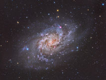 Triangulum Galaxy M33. Spiral galaxy approximately 3 million light years from Earth in the constellation Triangulum vector illustration