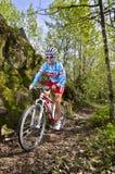 Triathlete Royalty Free Stock Image