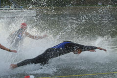 Triathlete's Dive. The opening seconds of a triathalon Stock Photos