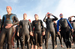 Triathlete Swimmers at Starting Line Stock Image