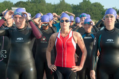 Triathlete Swimmers at Starting Line Royalty Free Stock Image