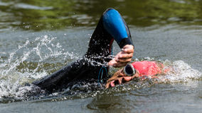 Triathlete in swimming Stock Photos