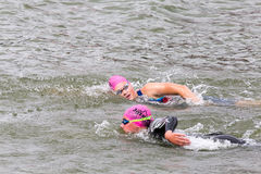 2 triathletes плавают на старте конкуренции триатлона Стоковое Фото