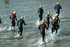 Triathletes royalty free stock images