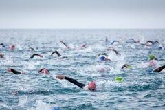 Triathletes i vatten i den Ironman triathlonkonkurrensen på den Calella stranden Royaltyfria Foton