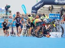 Triathletes spring med bicyles i övergångszonen Royaltyfri Foto