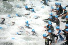 Triathletes on Start royalty free stock photo