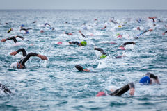 Triathletes swim on start of the Ironman triathlon competition Royalty Free Stock Photos