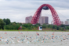 Triathletes swim on start of the triathlon competition in Moscow River with cable-stayed red Jivopisny Bridge behind Stock Photos
