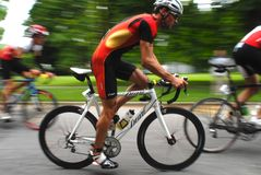 Triathlon 2008 del mondo Immagine Stock