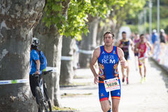 triathlon Obraz Stock
