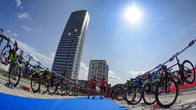 Triathlon Cesenatico 2017 royalty free stock image