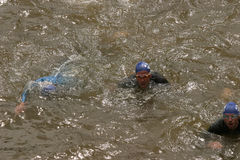 Triathlon competition swimmer Royalty Free Stock Photo