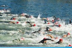Triathlon mężczyzna dopłynięcie fotografia royalty free