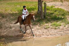 Triathlon in Russia, horseback jumping Stock Photography