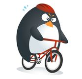 Fit Penguin Bicycle. Triathlon Sport character of Fit Penguin : Bicycle stock illustration