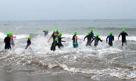 Triathlon Swim. Triathletes entering ocean surf for swim segment stock photo