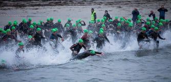 Triathlon swimmers Stock Photos