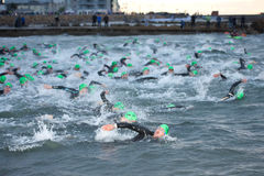 Triathlon swimmers Royalty Free Stock Photos