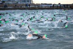 Triathlon swimmers Royalty Free Stock Photos