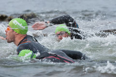 Triathlon swimmers Royalty Free Stock Photo