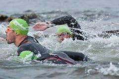Triathlon swimmers Royalty Free Stock Photo