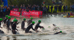 Triathlon swimmers entering open water swim stage. Stock Image