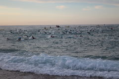 Triathlon triathlete sport healthy exercise swimming. A big group of triathletes swimming in a very rough sea at Ironman 70.3 Barcelona Royalty Free Stock Photo