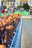 Triathlon triathlete sport healthy exercise swimming. Female triathletes line up at the start of a major triathlon event, the European Championships on Lake Stock Photo