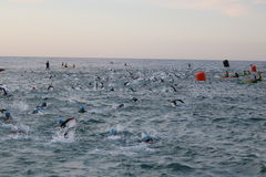 Triathlon triathlete sport healthy exercise swimming. A group of triathletes swimming in a rough sea at dawn at the start of Ironman 70.3 Barcelona Stock Photo