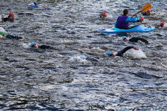 Triathlon triathlete sport healthy exercise swimming. Triathletes swimming in the River Derwent during the Peak District Triathlon in Derbyshire, England Royalty Free Stock Image