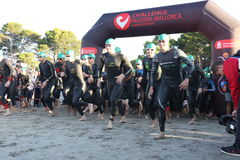 Triathlon triathletes sport healthy exercise swim. Triathletes get ready to enter the sea for the swimming leg of Challenge Peguera, a half distance ironman race Stock Images
