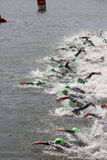 Triathlon triathletes sport healthy exercise swimming. Triathletes start at swimming leg at the 2016 London Triathlon in Docklands Royalty Free Stock Photos