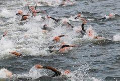 Triathlon, viele Schwimmenmänner lizenzfreie stockbilder