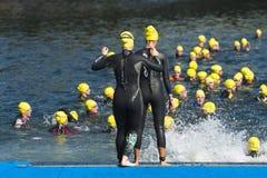 Triathlon women swimmers Stock Photos