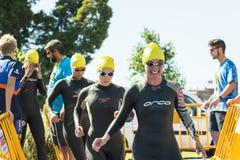 Triathlon women swimmers Royalty Free Stock Photos