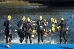 Triathlon women swimmers Royalty Free Stock Photo