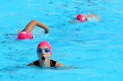 Triathlonrosa färger i Gold Coast Australien Arkivfoton