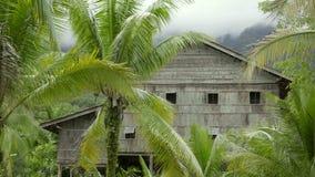 Tribal borneo houses stock footage