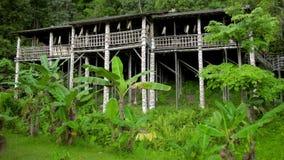 Tribal borneo houses stock video