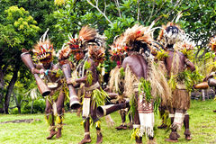 Tribal dance of young warriors in a rainforest Royalty Free Stock Photo