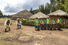 Tribal dancers. MUSANZE, RWANDA - Tribal Dancers of the Batwa Tribe Perform Traditional Intore Dance to Celebrate the Birth of an Endangered Mountain Gorilla in Stock Photos