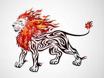 Tribal Fire Lion. Illustration of a fire lion in tribal tattoo style Royalty Free Stock Photos