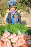 Khao Kho,Thailand : Tribal girl sold carrots Stock Photo