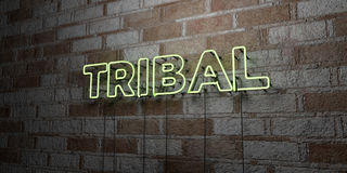TRIBAL - Glowing Neon Sign on stonework wall - 3D rendered royalty free stock illustration. Can be used for online banner ads and direct mailers Royalty Free Stock Images
