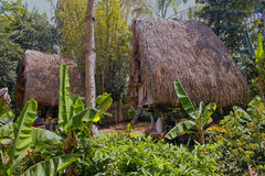 Tribal Houses Royalty Free Stock Images