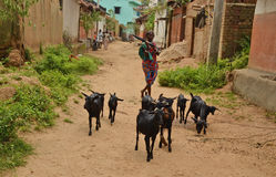 Tribal Poverty. India's elevated amount of poverty is mainly caused from the residents and their communities' inability to maintain essential and constant assets Royalty Free Stock Photography